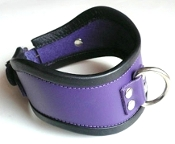 SHORT LOCKING PURPLE LEATHER POSTURE COLLAR